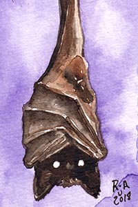 Hanging Bat Watercolor