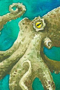 "Watercolor Octopus 2x3"" Illustration"