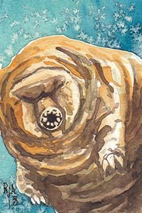 Watercolor Tardigrade Waterbear
