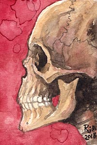 Human Skull Watercolor